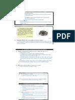 Ficha Sobre Recursos Do Subsolo e Radiação Solar Correção