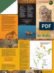 NTCA Booklet Tiger