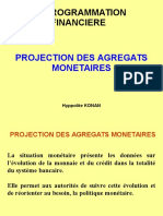 Projection Des Comptes Monetaires