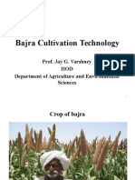Bajra Cultivation Techniology-Prof JAY G.varshney