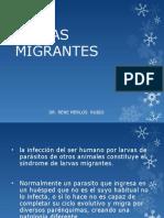 Clase 4 Larvas Migrantes