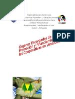 Órganos Encargados de La Promoción y Financiamiento de La Cooperativa en Venezuela