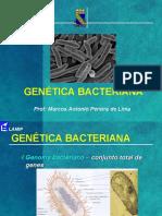 04 Aula Genética bacteriana