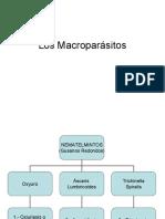 Los Macroparásitos