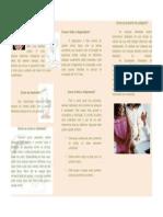 Varicela Folder