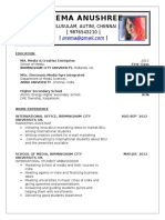 Professional Resume Format (18)