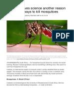 zika-mosquitoes-14845-true
