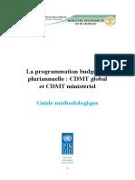 La programmation budgétaire pluriannuelle