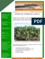 072---12.07.12---Stress-en-la-Papaya.pdf