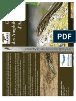 Guide Des Amphibiens Et Reptiles d'Aquitaine