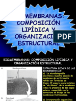 Tema 4. Biomembranas y Sus Funciones
