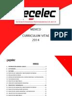 CV Servicios & Soluciones Electromecanicos SA de CV 2014 - PRESENTACION