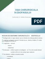 PatPatologie esofag.pptologie esofag