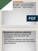 Persarafan-Abdomen1