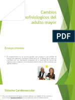 Cambios Anatomofisiologicos Del Adulto Mayor