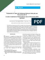 Tratamento in utero de hidrópsia fetal por infecção por Parvovírus B 19