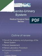 genito urinary system