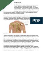 Fisioterapia Y Dolor De Rodilla
