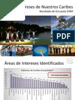 Resultados Encuesta ODM 2015