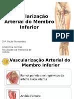 Vascularização Arterial Do Membro Inferior