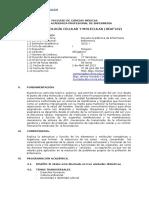 SILABO BCyM Por Competencia ENF - Ucv