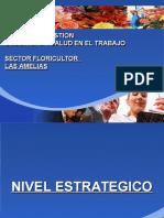 SGSST Sector Flores