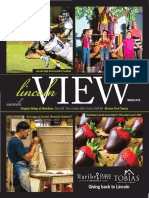 Lincoln View 2016 March LowRes.pdf