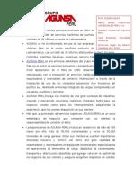 AGUNSA.docx