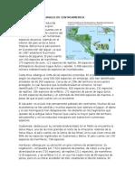 Las Regiones Naturales de Centroameric1