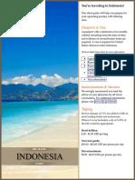 Indonesia Pre-Travel Guide