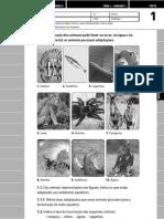 CN5_Areal_Testes.pdf