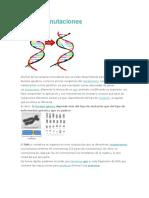 mutaciones resumen