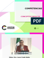 Marco competencias.ppt