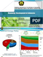 Bioenergy Development in Indonesia