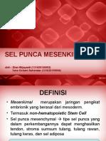 PPT Stem Cell Mesenkimal