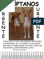 Cartel Lucio Y Ares