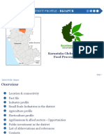Bijapur District Profile