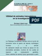 Utilidad de Animales Transgenicos