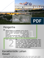 PPT Karakteristik Lahan Basah