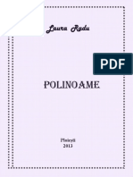 PolinoameMatematicaTeorie