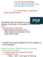 Activities That Disrupt the Cycle in an Ecosystem and Importance of Forst