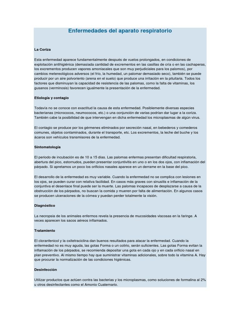 Enfermedades Del Aparato Respiratorio Palomos