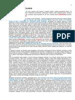 dza.pdf