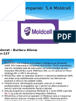 Moldcell- MG