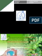 Consumo Responsable y Cuidado Del Ambiente 2015 Tecnicos