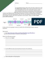 Comp_Activity-_Build_a_membrane.docx