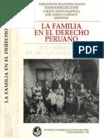 1 Familia Derecho Peruano