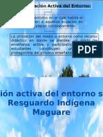 Observacion Informe