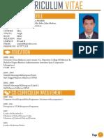 Resume Infografik Latest