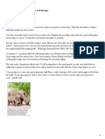 2 Rhinos Poached